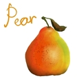 painted pear vector image