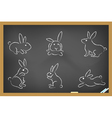 rabbits sketch drew on blackboard vector image vector image