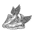 sneakers with wings engraving vector image