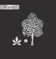 black and white style icon of castanea vector image