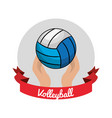 emblem volleyball game icon vector image