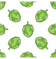 green hop seamless pattern vector image