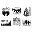 coniferous forest mountains and wooden logo vector image