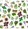 Fresh herb spice condiment seamless pattern vector image vector image