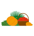 harvest apples pumpkin and melon festival vector image