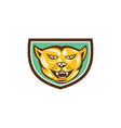 Puma Mountain Lion Head Shield Woodcut vector image vector image