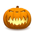 pumpkin head on a white background for decoration vector image