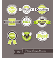 Set of green labels on grey background vector image vector image
