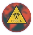 Map of Earth with sign Ebola Virus vector image
