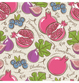 Background with pomegranate fig and blueberry vector image vector image
