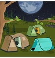 camping at night with tents vector image