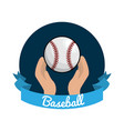 emblem baseball game icon vector image