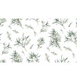 eucalyptus seamless pattern of different willow vector image