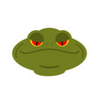 frog head isolated face of toad amphibian animal vector image