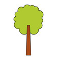 tree natural botanical ecology forest vector image vector image