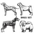 Sketch Dogs Portrait Set vector image