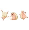 Hedgehogs vector image