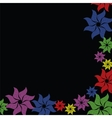 Colorful flower burst on black background vector image