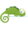 cute chameleon cartoon vector image vector image