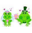 frogs wedding vector image