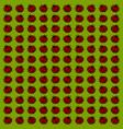 ladybug wallpaper on white background vector image