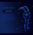 low poly blue hornbill bird with galaxy vector image vector image