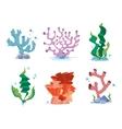 Reef corals seaweeds underwater wildlife plants vector image vector image