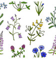 seamless pattern with hand drawn wild flowers vector image