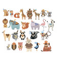 set cute animals indians collection animals vector image vector image