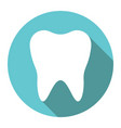 white tooth flat design vector image