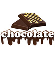 Word chocolate and two pieces of dark chocolate vector image