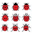 red ladybugs 9 vector image