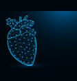 heart with aorta and veins low poly model human vector image vector image