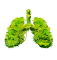 human lungs made up bright green lushy bushes vector image