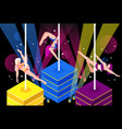 pole dance performance vector image