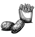 potato vector image vector image