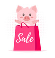 sale banner with pig vector image vector image