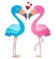 valentine flamingos topic image 2 vector image vector image