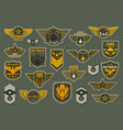 army air forces airborne units badges and chevron vector image
