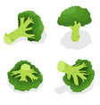 broccoli icon set isometric style vector image vector image