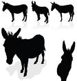 Donkey black silhouette vector image