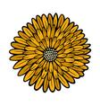 flower 209 09 vector image