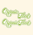 hand drawn lettering organic food with outline and vector image vector image