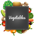 Mixed vegetables around the border vector image vector image