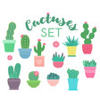 set cacti and succulents in flower pots vector image