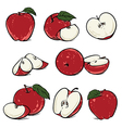 Red apple with leaf and slice vlip art vector image