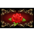 red rose with golden ornament vector image