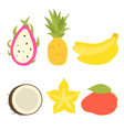 set of tropical fruits icons vector image