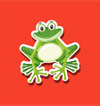 a frog character animal vector image vector image