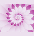 abstract pink and white floral design background vector image vector image
